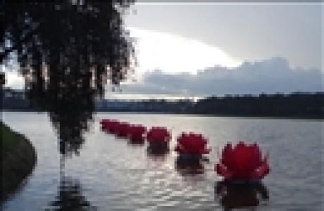 Phật giáo Đà Lạt sẽ hạ thủy 7 đóa sen mùa Phật đản