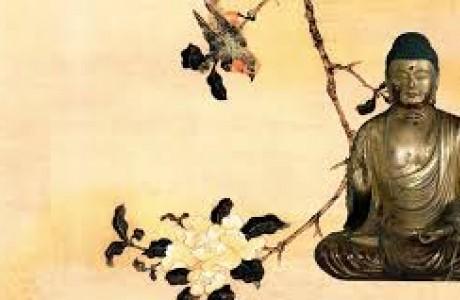 Tại sao Đức Phật thường nói đến sự khổ đau