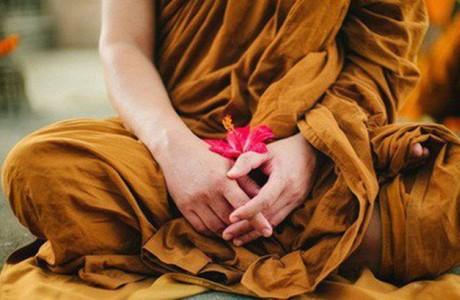 Thanh lọc tâm hồn, tìm về bản chất của sinh mệnh