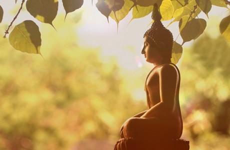 4 việc đơn giản khiến cuộc sống luôn hạnh phúc, an bình