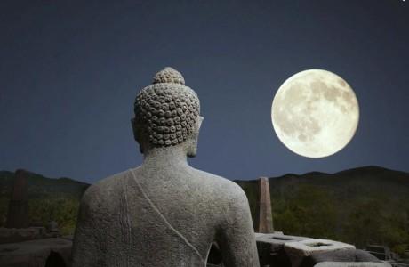 Người trí tuệ biết tự hiểu mình, người nhân đức biết tự yêu quý mình