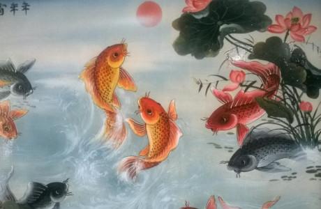 'Cá chép vượt Vũ Môn': Một câu chuyện cảm động chưa từng được kể