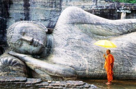 Trí tuệ cao nhất là lương thiện, khôn ngoan lớn nhất là phẩm hạnh